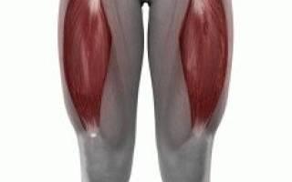 Упражнения для растяжки внутренней поверхности бедра
