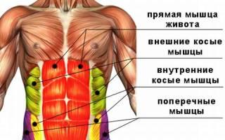 Упражнения на коврике для похудения