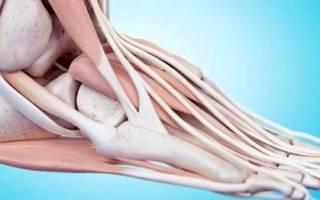 Боли в сухожилиях и мышцах