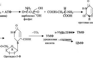 Уровень мочевой кислоты при подагре у мужчин