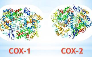 Ингибиторы циклооксигеназы 2 препараты