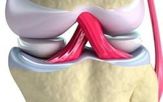Почему болят сухожилия на ногах