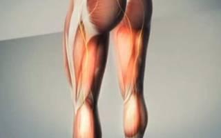Тянущая боль в ягодице отдающая в ногу