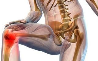Строение колена человека и боли в колене