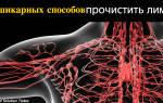 Как убрать застой лимфы в организме