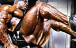 Мышцы внешней поверхности бедра