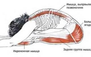 Растяжка задней поверхности ног