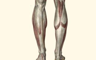 Почему постоянно мерзнут ноги у мужчин